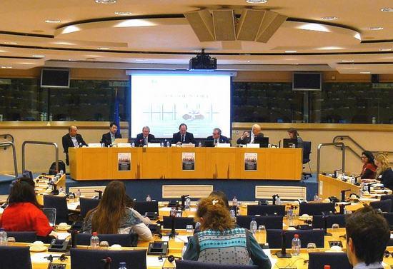 2013-1-30-eu-hearing-01