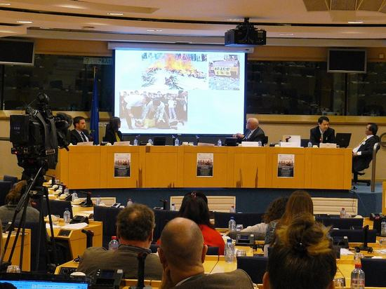 2013-1-30-eu-hearing-02