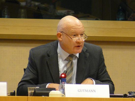 2013-1-30-eu-hearing-04
